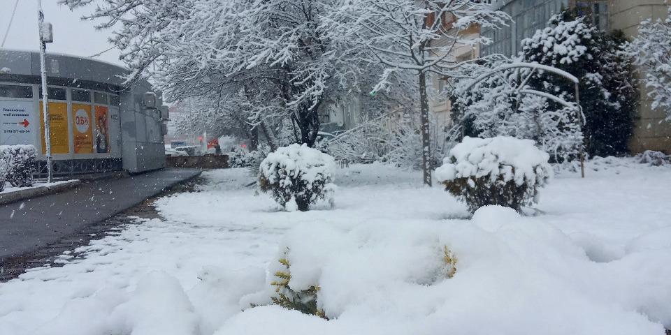 Первый снег в Славянске-на-Кубани
